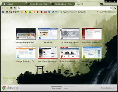 Google Chrome Browser Example